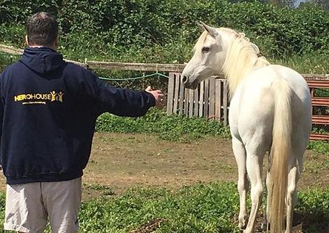 Image of equine facilitated learning at H3-HopeHorsesNHeroes, Monroe WA