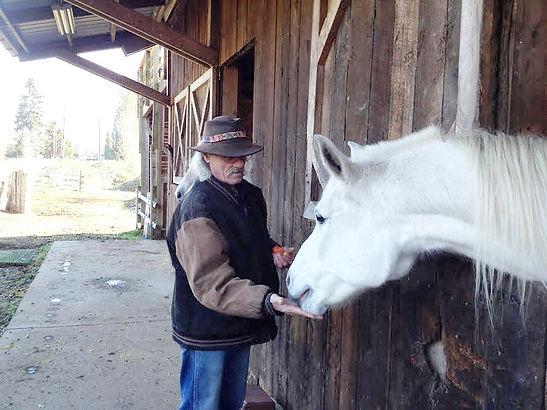 Image of horses healing veterans  at H3-HopeHorsesNHeroes, Monroe WA