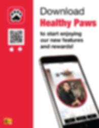 healthypaws_app_flyer1(1).jpg