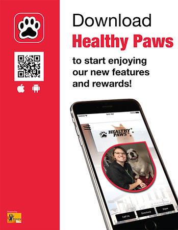 healthy paws reward app