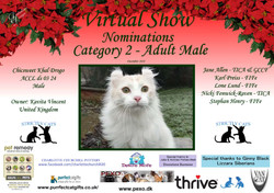 Diploma Strictly Cats Category 2_Page_23