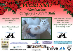 Diploma Strictly Cats Category 2_Page_21