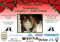 Diploma Strictly Cats Category 2 1_Page_