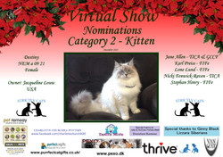 Diploma Strictly Cats Category 2_Page_05