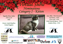 Diploma Strictly Cats Category 2_Page_01