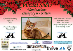 Diploma Strictly Cats Category 6_Page_2.
