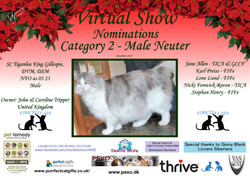 Diploma Strictly Cats Category 2_Page_12