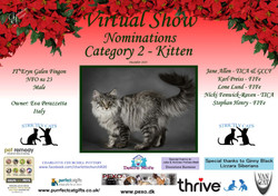 Diploma Strictly Cats Category 2_Page_04