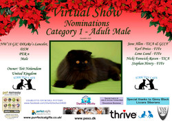 Diploma Strictly Cats Category 1_Page_15