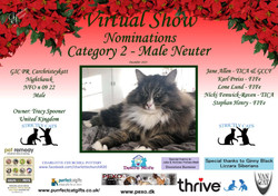 Diploma Strictly Cats Category 2_Page_13