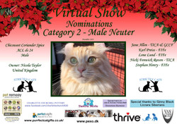 Diploma Strictly Cats Category 2_Page_14