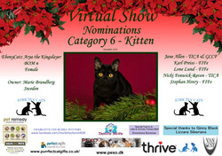 Diploma Strictly Cats Category 6_Page_3.