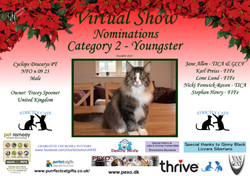 Diploma Strictly Cats Category 2_Page_06