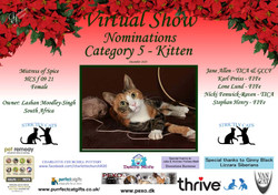 Diploma Strictly Cats Category 5_Page_1.