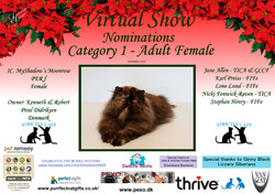 Diploma Strictly Cats Category 1_Page_16