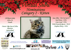 Diploma Strictly Cats Category 2_Page_03