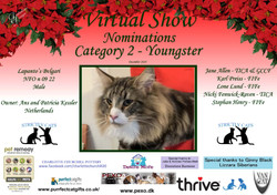 Diploma Strictly Cats Category 2_Page_07