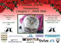 Diploma Strictly Cats Category 2_Page_20