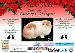Diploma Strictly Cats Category 1_Page_05