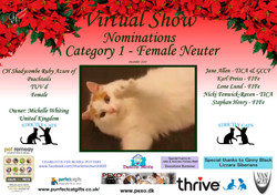 Diploma Strictly Cats Category 1_Page_12