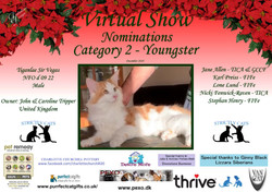 Diploma Strictly Cats Category 2_Page_10