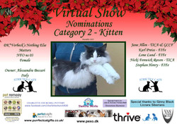 Diploma Strictly Cats Category 2_Page_02