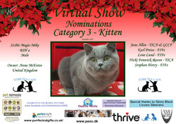Diploma Strictly Cats Category 3_Page_01
