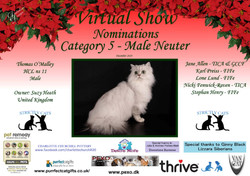 Diploma Strictly Cats Category 5_Page_2.