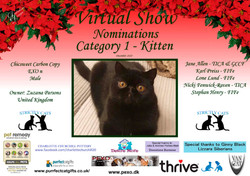 Diploma Strictly Cats Category 1_Page_02