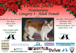 Diploma Strictly Cats Category 3_Page_15