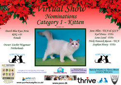 Diploma Strictly Cats Category 1_Page_01