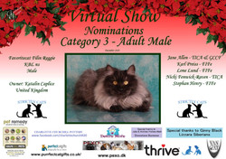 Diploma Strictly Cats Category 3_Page_12