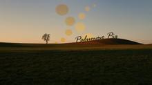10 Jahre Palummo Pix (neue Homepage)