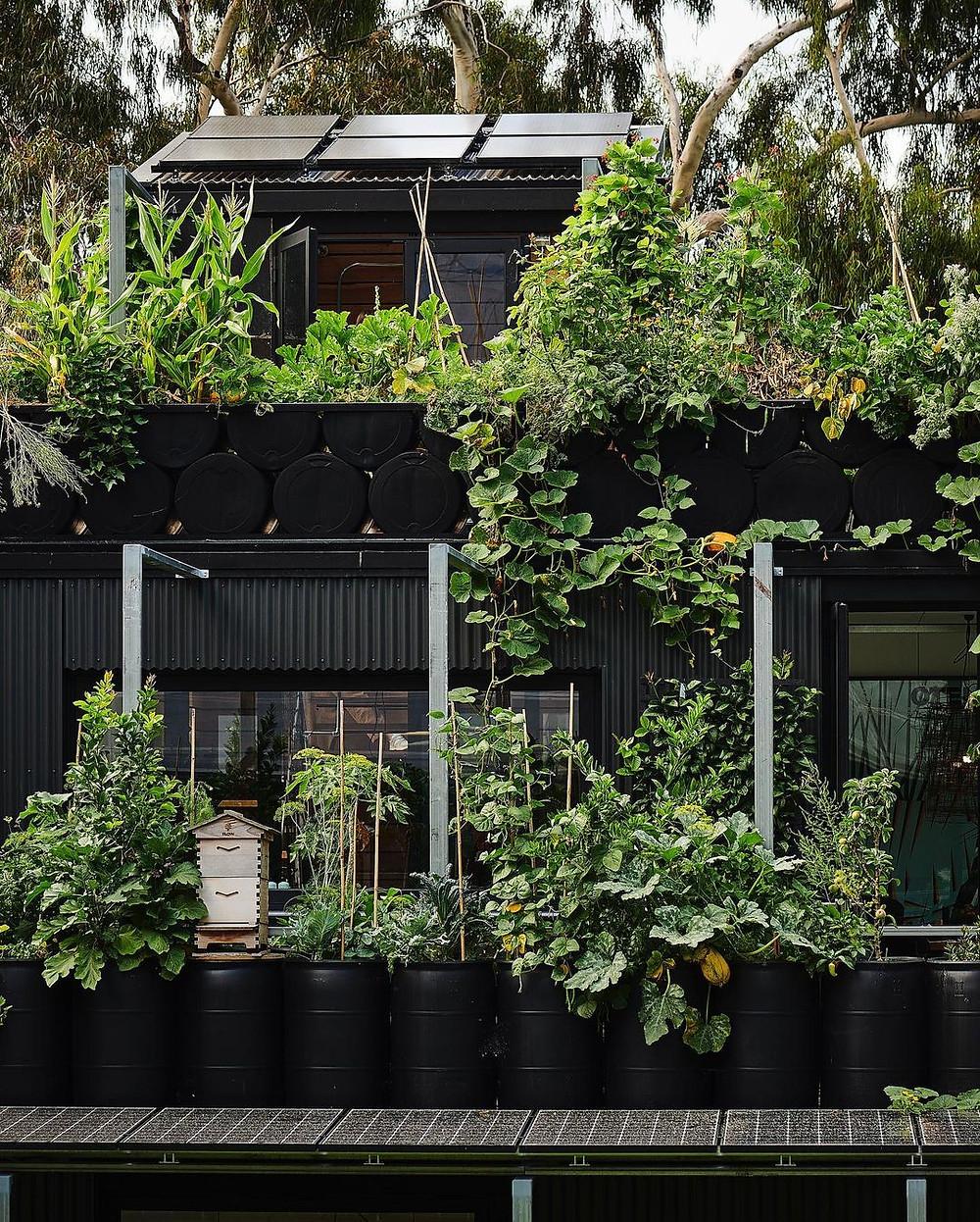 sustainability design interior designer australia