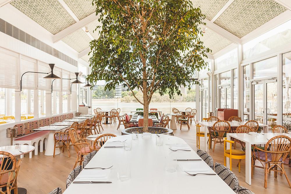 furniture restaurant design designer interior