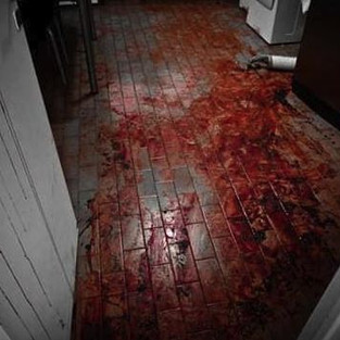 """This was not the scene of a farm murder. A reverse image search shows it to be an art piece. Richard Powell's """"blood performance - kitchen floor - Buenos Aires 2010"""""""
