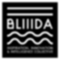 2.3.-BLIIDA.png