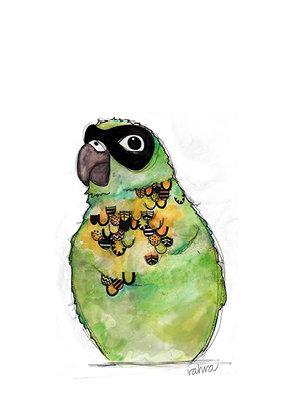 Rahra : Bandit Bird