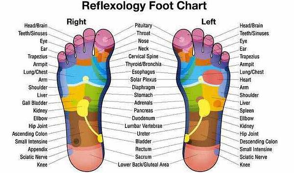 Reflexology-Foot-Chart1.jpg