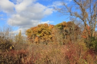Landscape Photography by Ella Blame