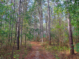 October Hike