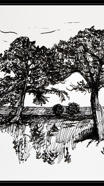 Evening Trees - ink drawing by Ella Blame