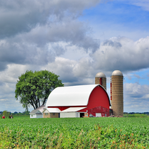 August Farmland