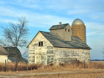 Illinois Countryside