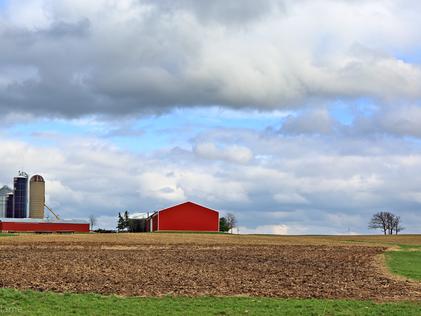 Farmland and Clouds