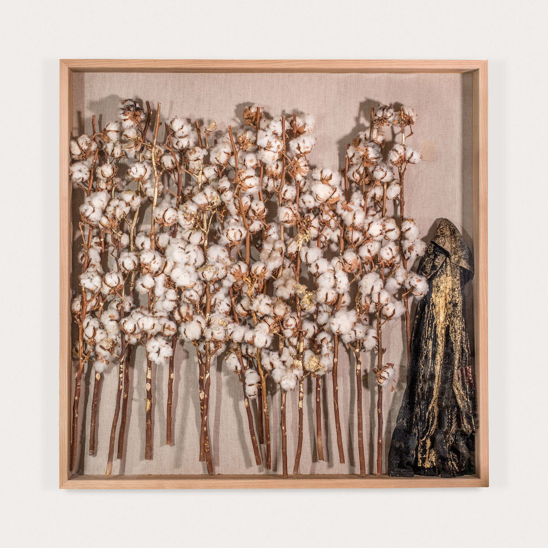 The Golden Mean, 2015, Cotton Branches, Gold Acrylic paint, Tar and a Readymade Lace Shirt. a series of 8 unique works each 100X100X12 cm.
