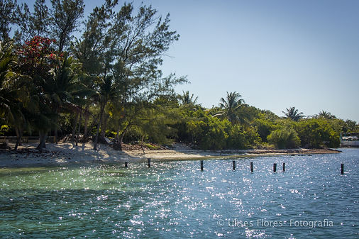 Secluded beach on Isla Mujeres