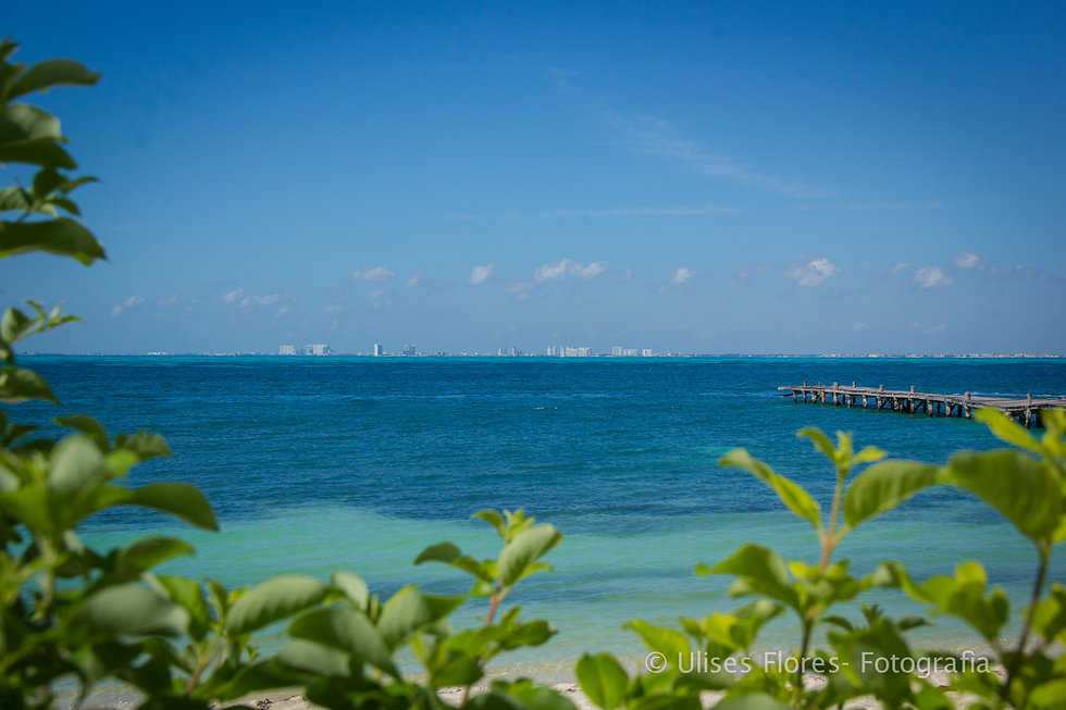 Sotavento Isla Ocean View IMG_7195.jpg