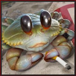 Rebel crab