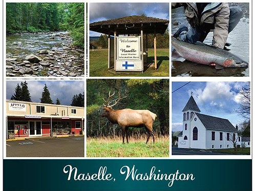 New Naselle Postcard
